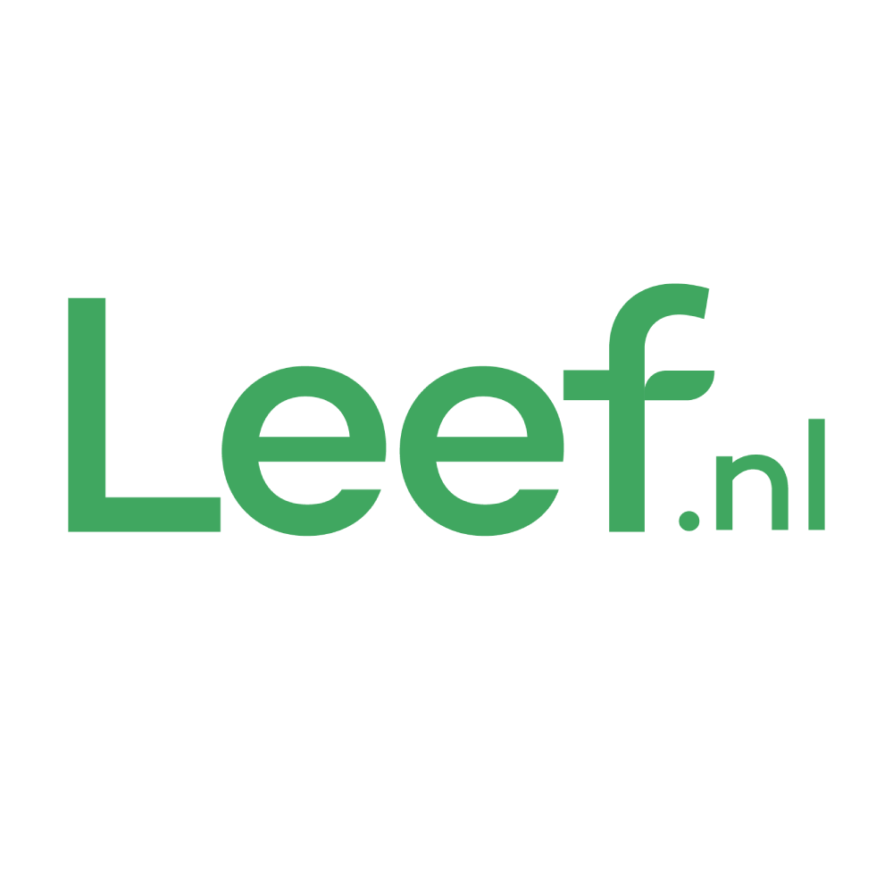 Healthypharm Foliumzuur tablet 0,5mg